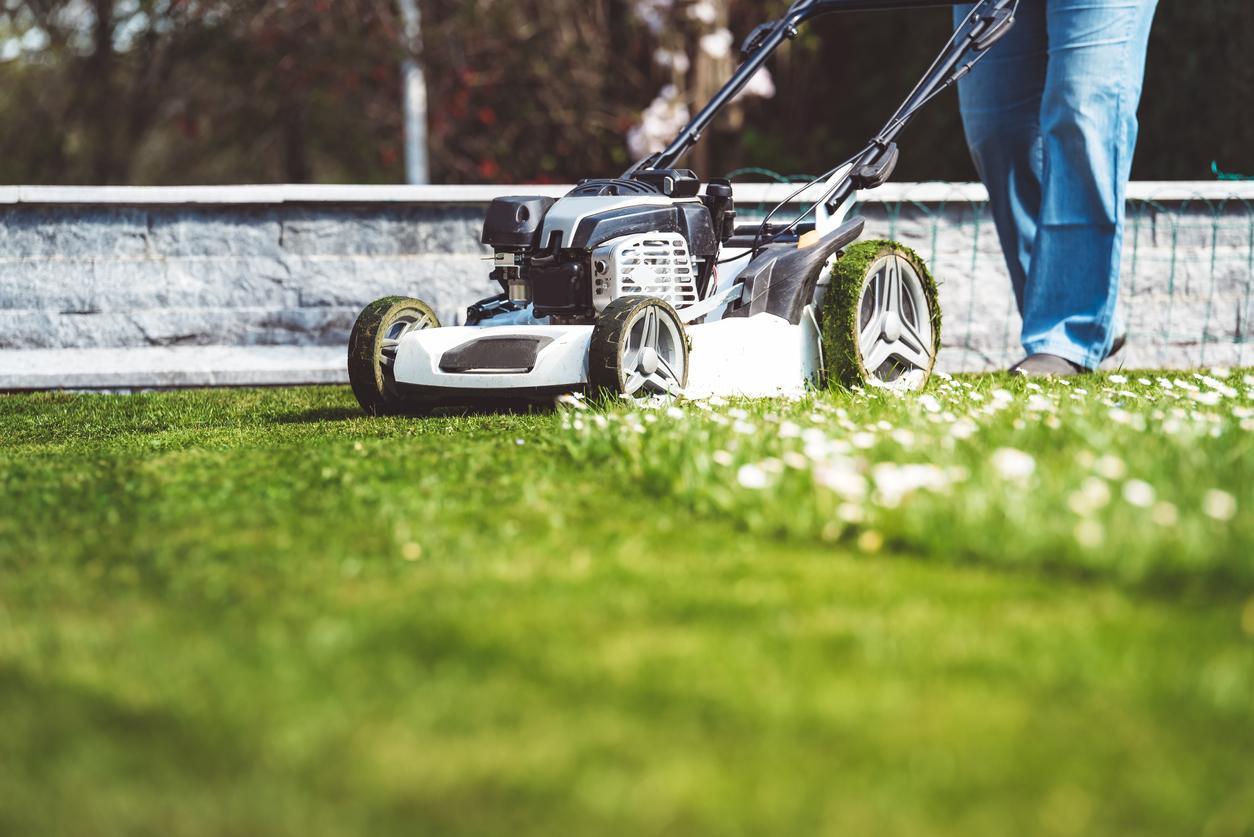 keep yard clean